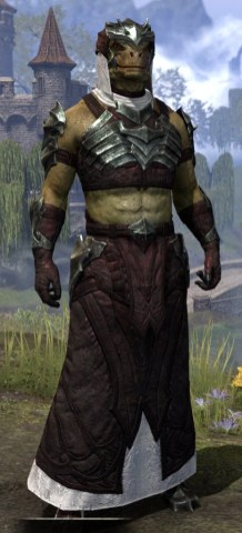 Waking Flame Light - Argonian Male Robe Front