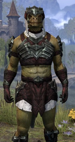 Waking Flame Light - Argonian Male Shirt Close Front