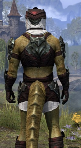 Waking Flame Light - Argonian Male Shirt Close Rear
