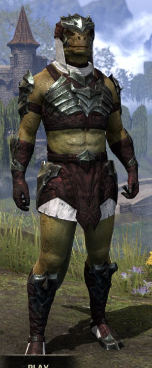 Waking Flame Light - Argonian Male Shirt Front