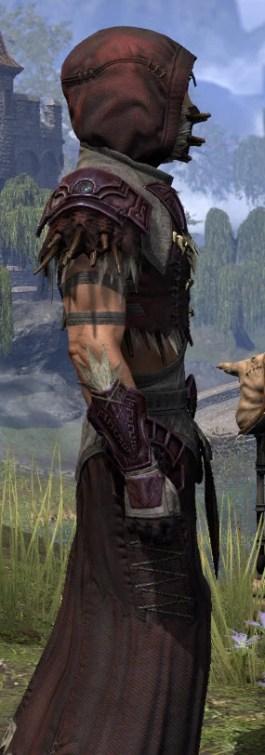 Wayward Guardian Ancestor Silk - Male Robe Close Side