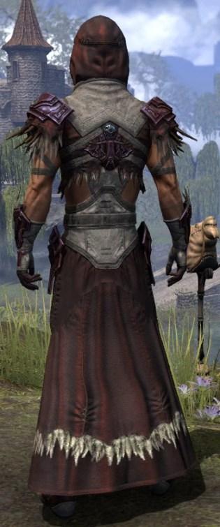 Wayward Guardian Ancestor Silk - Male Robe Rear