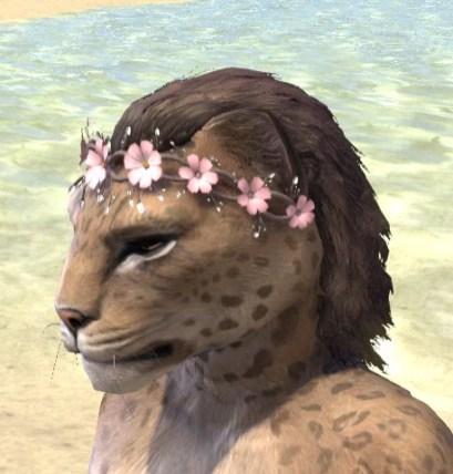 Cherry Blossom Anadem - Khajiit Female Side