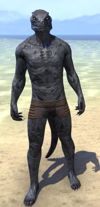 Hollow Void Husk - Argonian Male Front