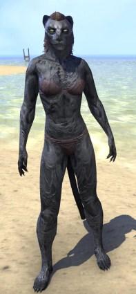 Hollow Void Husk - Khajiit Female Front