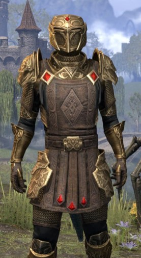 Imperial Champion - Argonian Male Close Front