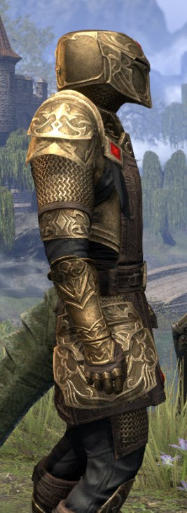 Imperial Champion - Argonian Male Close Side