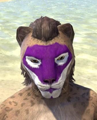 Prankster Purple Face Paint - Khajiit Female Front