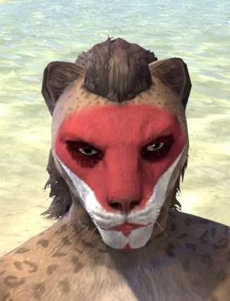 Raconteur Red Face Paint - Khajiit Female Front