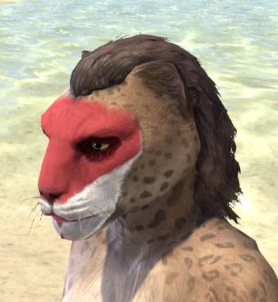 Raconteur Red Face Paint - Khajiit Female Side