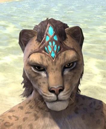 Saliache Aetherial Tiara - Khajiit Female Front