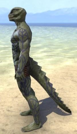 Saliache Scholar Body Markings - Argonian Male Side