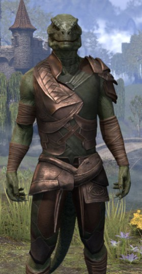 Eveli's Adventuring Leathers - Argonian Male Close Front