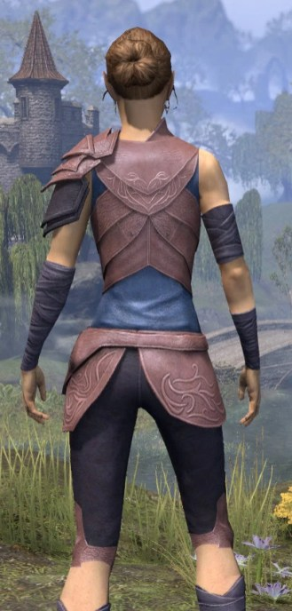 Eveli's Adventuring Leathers - Dyed Close Rear