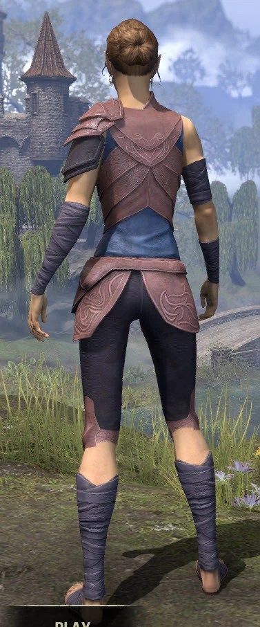Eveli's Adventuring Leathers - Dyed Rear
