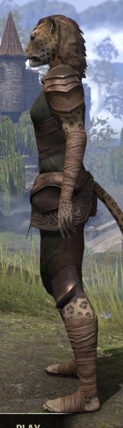 Eveli's Adventuring Leathers - Khajiit Female Side