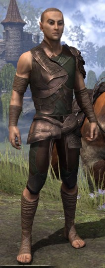 Eveli's Adventuring Leathers - Male Front
