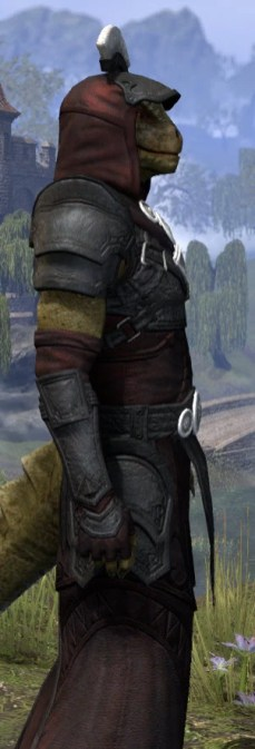 Ivory Brigade Light - Argonian Male Robe Close Side