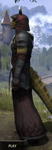 Ivory Brigade Light - Argonian Male Robe Side