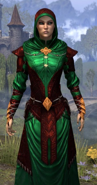 Nibenese Court Wizard - Dyed Close Front