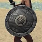 True-Sworn Maple Shield