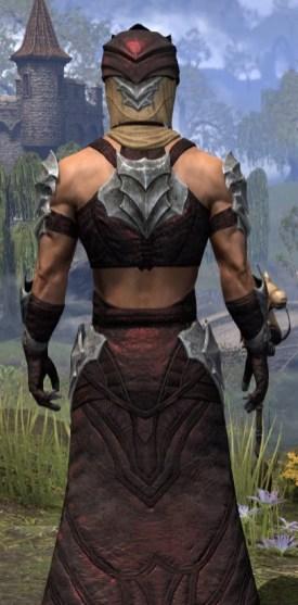 Waking Flame Ancestor Silk - Male Robe Close Rear