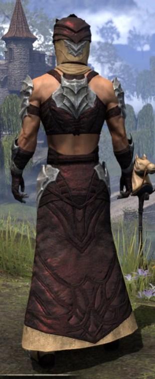 Waking Flame Ancestor Silk - Male Robe Rear