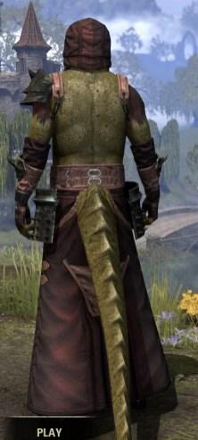 Crimson Oath Light - Argonian Male Robe Rear