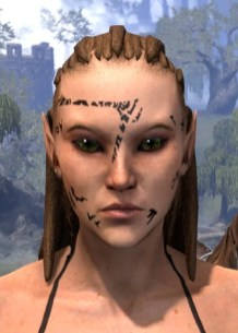 Shattered Chivalry Face Tattoo - Female Front