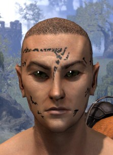 Shattered Chivalry Face Tattoo - Male Front