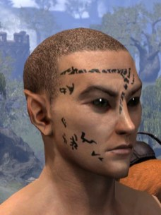 Shattered Chivalry Face Tattoo - Male Side