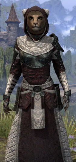 Silver Rose Light - Khajiit Female Robe Close Front