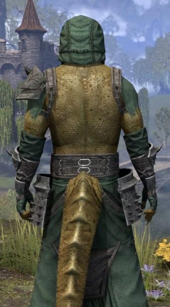 Crimson Oath Homespun - Argonian Male Robe Close Rear