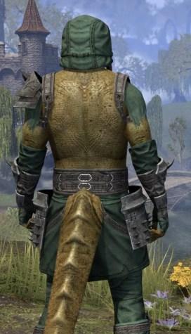 Crimson Oath Homespun - Argonian Male Shirt Close Rear