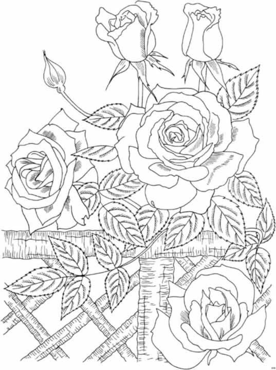 Dibujo de flores para imprimir y pintar :: Flores para