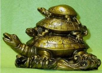 turtle-feng0043