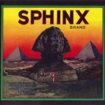 Sphinx Image Pasadena Tour