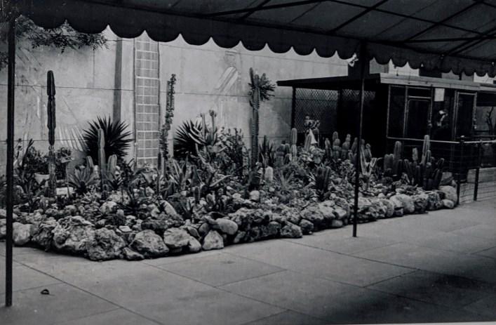 Egyptian Theater Cactus Garden