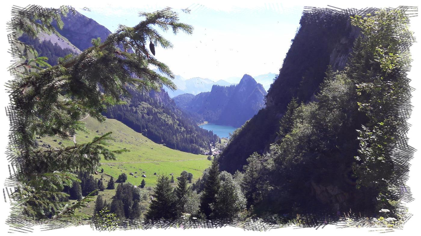 Vue sur le lac de Taney depuis le ruisseau de Taney (côté ouest du lac)
