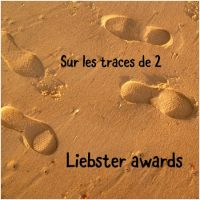 Sur les traces de 2 Liebster awards