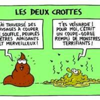 """CHUT! Notre microbiote nous """"cause""""..."""
