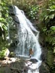 Cascade dans la forêt de Tambour
