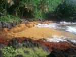 Etat du littoral guadeloupéen