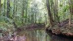 rivière se trouvant au pied de la madeleine