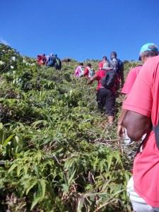 Le groupe aacn à l'ascension du piton tarade
