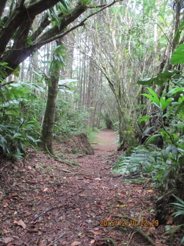 Sentier du parcours