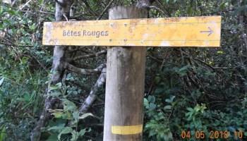 Panneau d'indication de bêtes rouges