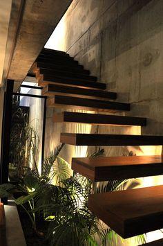 diseño plantas Costa Rica