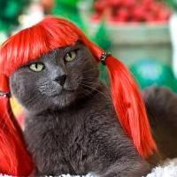 Pelirroja desnuda / Naked redhead