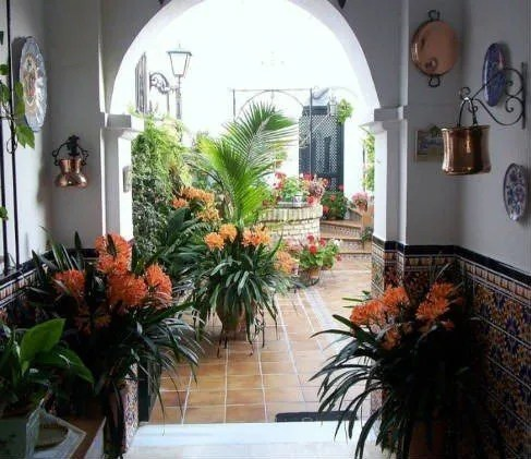 Ideas Jardines Interiores